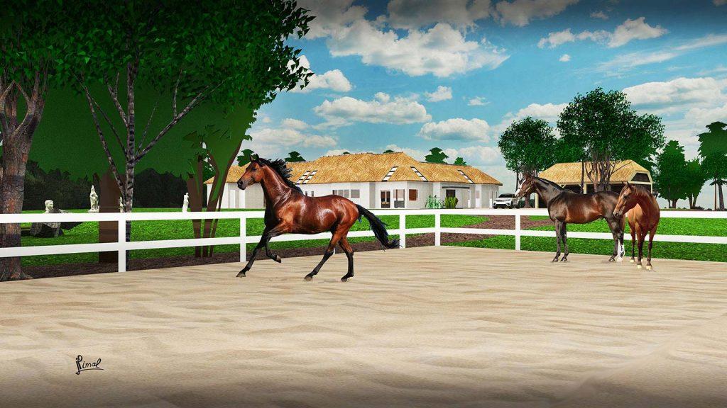 15-PaardenBak-Landgoederen-Tilburg